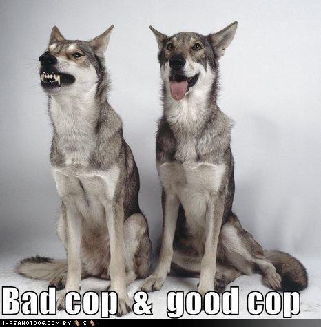 Canis Copus
