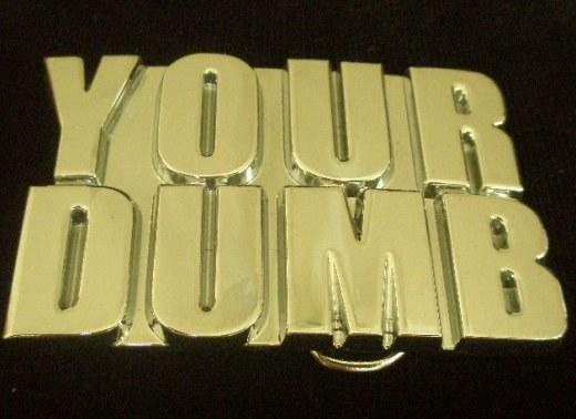 Your Dumb!
